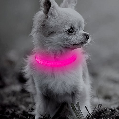 BSEEN LED Dog Collar Light - USB Rechargeable Glow in The Dark Puppy Collar, Light Up Dog Collars for Small Dogs, Safety Dog Lights for Night Walking (Pink, XS)