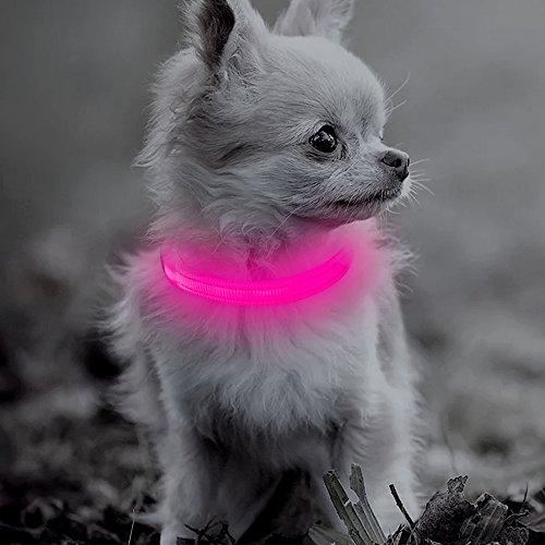 BSEEN LED-Hundehalsband für kleine Hunde und Katzen, über USB wiederaufladbar, leuchtendes Haustier-Halsband, XS verstellbares reflektierendes Nylon-Halsband für nächtliches Gassigehen (XS, Pink)