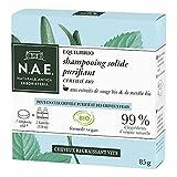 N.A.E. - Shampooing Solide Certifié Bio - Purifiant Cheveux Gras - Extraits de Sauge Bio et de Menthe Bio - Formule Vegan - 100 % d'ingrédients d'origine naturelle - Savon de 85 g