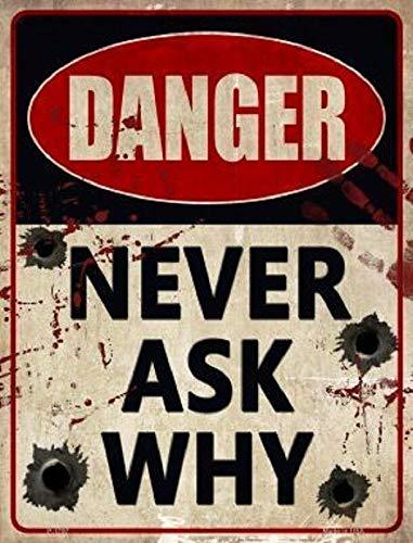 Retro-Metallschild zum Aufhängen, Motiv: Danger Never ask Why (in englischer Sprache), Blechschild für Restaurant, Zuhause, Bar, Strand, Hotel, Wanddekoration