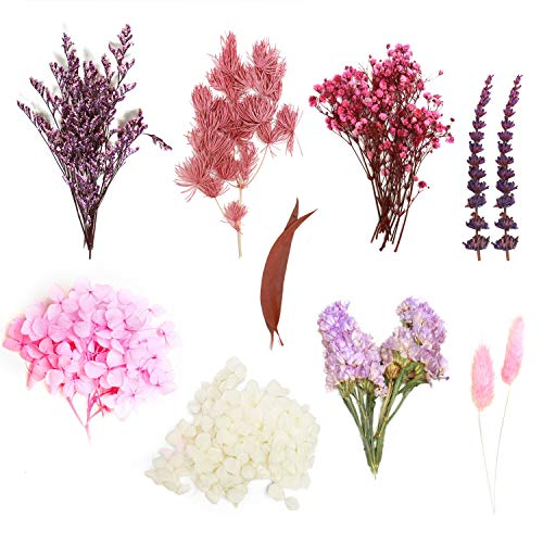 YoleShy Dried Flowers, 9 Types Natural Real Dried Leaf Flowers for Resin Jewellery, Scrapbooking DIY Candle, Art Paper Making, Floral Decors - Lavender, Hydrangea, Forget-me-not, Rabbit Tail and More
