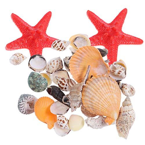 ABOOFAN Cuentas Naturales de Concha de Caracol Cuentas de Concha de Mar Perlas de Playa de Océano Colgantes para Manualidades Fabricación de Jarrones Campanas de Viento Ornamento Náutico