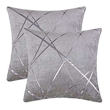 GIGIZAZA Accent Silver Grey Velvet Decorative Throw Pillow Cushion Covers Set of 2 for Sofa Decoration Soft Thick Jacquard Chenille by (Silver Grey, 20 x 20)