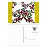 植物の果実を食べる鳥グリーン 友人のポストカードセットサンクスカード郵送側20個