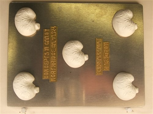 Stomach Digestive system pieces H163 Halloween Chocolate Candy Mold