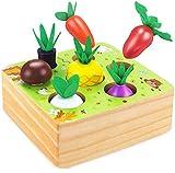 Ydq Verduras Clasificación a Juego Juguetes Preschoolers Educativo Interactivos | Juego de Madera | Juguete de rol Montessori | Reconocimiento de Color y Forma Game Regalo para Niños