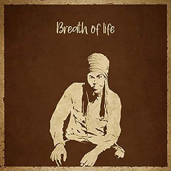 Breath Of Life (Remix)