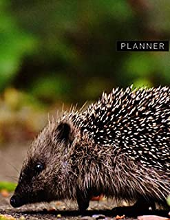 Planner: Hedgehog 1 Year Daily Planner (12 Months) | Animal World Nocturnal | 2020 - 2021 | 365 Pages for Planning | January 20 - December 20 | ... | Plan Each Day Set Goals & Get Stuff Done