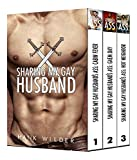 Sharing My Gay Husband Vol. 1 (English Edition)
