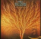Songtexte von Van der Graaf Generator - Still Life