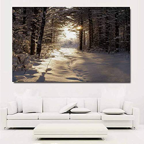 ParadiseDecor Winter Art Decor Decals Stickers Christmas Season with Snow and Frozen Forest Sun Rays Very Cold Woods Scenery Poster Wall Prints for girs 20x16 Inch