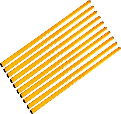 Agility Sport pour Chiens - Lot de 10 Jalons, Longueur 160 cm, Ø 25 mm, Jaune - 10x 160y