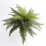artplants.de Decorativo Helecho Real, 35 Hojas, Verde, en Vara de fijación, 50cm, Ø...