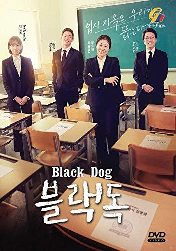 Black Dog (Korean Drama, English Sub, All Region DVD)
