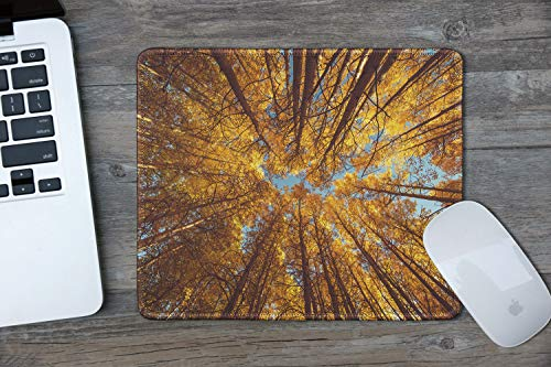 dealzEpic - Art Mousepad - Natural Rubber Mouse Pad Printed with Low Angle Shot of Yellow Trees in Autumn - Stitched Edges - 9.5x7.9 inches Photo #3