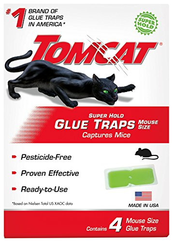 Tomcat Super Hold Glue Traps Mouse Size, Contains 4 Mouse Size Glue Traps - Captures Mice - Also Used for Cockroaches, Scorpions, Spiders and Many Other Pests