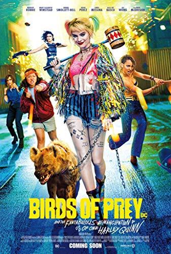 51qD6tKix4L Harley Quinn Birds of Prey Posters