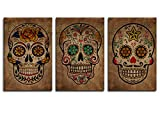 Canvas Wall Art Sugar Skull Vintage Abstract Canvas Picture Day of The Dead Contemporary Art Design Framed Modern Mexican Artwork for Living Room Bedroom Office Home Wall Decor 16' X 24' 3 Pieces