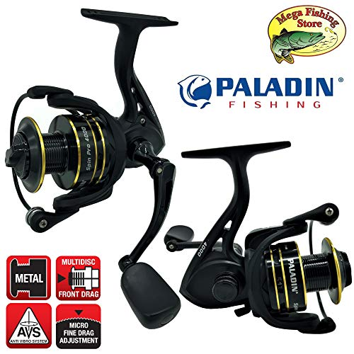 PALADIN Fishing Spin Pro FD Spinrolle - Profi Angelrolle/Stationärrolle - 2000 & 4000 (2000er - 0,21mm > 300m)