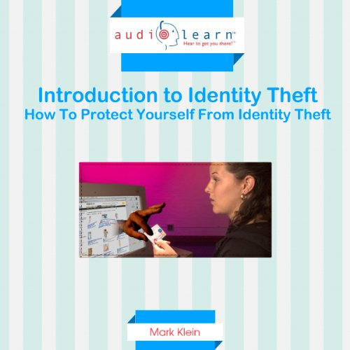 Introduction to Identity Theft audiobook cover art
