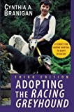 greyhound dogs adoption guide book