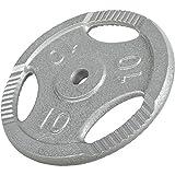 GORILLA SPORTS Hantelscheibe Gusseisen Gripper – 20 kg Silber mit 30/31 mm Bohrung
