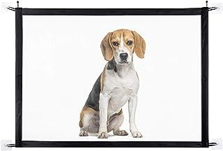 Puerta mágica para perros, puerta portátil y plegable para