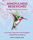 Mindfulness Redesigned for the Twenty-First Century: Let's Not Cage the Hummingbird: A Mindful Path to Resilience