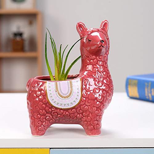 ZENING Macetas de cerámica de alpaca para interiores y casas, decorativas, plantas de cactus suculentas