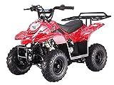 Smart DealsNow Brings 110cc ATV Fully Automatic Gas ATV 4 Wheeler - Red Spider