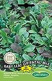 Germisem Baby Leaf Oriental Mix Semillas de Lechuga 2 g, EC6025