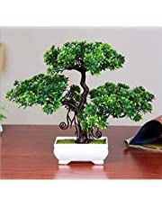 DecoratingLives Artificial Bonsai Welcoming Pine Trees with Plastic Pot (Green, 1 Piece)