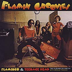 The Flamin' Groovies - Mazik
