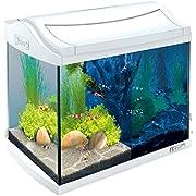 Tetra AquaArt Discovery Line LED Aquarium-Komplett-Set (inklusive LED-Beleuchtung, Tag- und Nachtlichtschaltung, Innenfilter und Aquarienpumpe, ideal für Garnelen) 20 Liter weiß