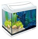 Tetra 244863 AquaArt - Set Completo per Acquario, 20 l, Colore: Bianco