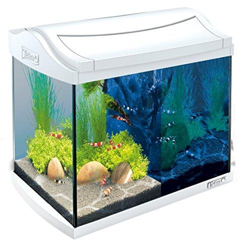 Tetra AquaArt Discovery Line LED Aquarium complete set (inclusief LED-verlichting, daglicht- en nachtlichtschakeling, binnenfilter en voering), verschillende Kleuren en maten, 20 L, wit