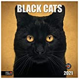 Black Cats - 2021 Hangable Wall Calendars by Red Ember Press - 12' x 24' When Open - Thick & Sturdy Glossy Paper - A Year of Good Luck