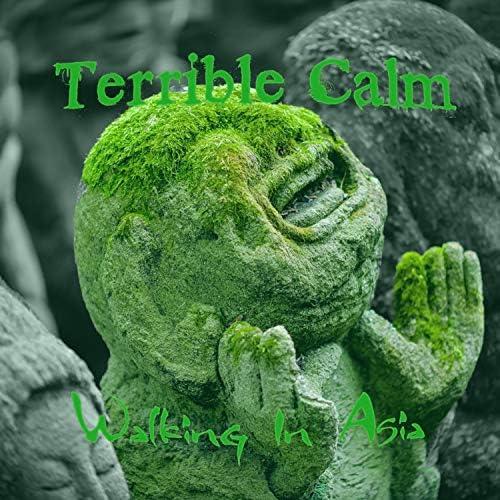 Terrible Calm