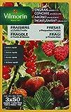 Vilmorin 6410799 - Abono granulado para fresas de acción rápida, 800g