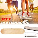 Currentiz Skateboard Deck Flip Display Tavola da Skateboard Element Tavola da Skateboard Intermedia Tavola di Acero Concava Piastra da Altamente Elastica con Superficie A Doppio Bilanciere