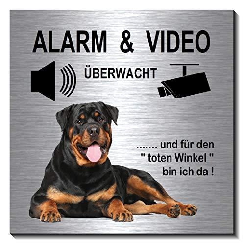 Rottweiler-Alarm-Video-Überwachung-Hund-10 x 10 cm-Schild-Hundeschild-Alu. Edelstahloptik-Hunde-Tierschild-Warnschild-Hinweisschild (1910-67 - mit Klebepads)