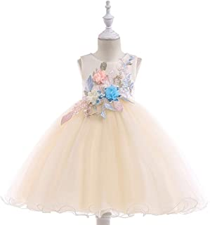 eef4477191a80 BCSHF Robe Princesse Filles Filles Robe De Noeud Papillon Parti Enfants Robe  De Soleil Robe De