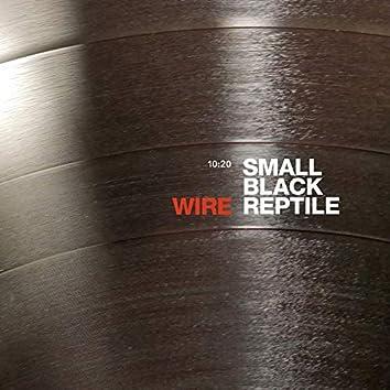 Small Black Reptile (10:20 Version)