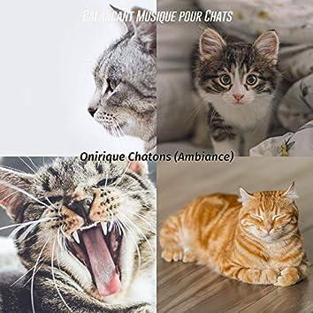 Onirique Chatons (Ambiance)