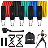 SGODDE 13PCS Resistance Bands Set, Workout Bands Natural Latex Exercise Bands with Handles, Door Anchor, Waterproof Carry Bag, Legs Ankle Straps for Resistance Training, Physical Therapy, Home Workout