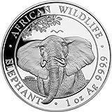 Silbermünze Somalia Elephant 2021 - Moneda de 1 onza, en cápsulas para monedas, impuesto diferencial según § 25a...