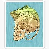 BeliNZStore - Adesivi Colorati con Iguana e Teschio, Confezione da 3 Pezzi