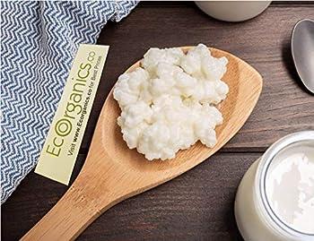 2 TSP - Milk Kefir Grains - Bulgaros - Live Fresh & Organic - Active Probiotic Cultures by Eco Organics