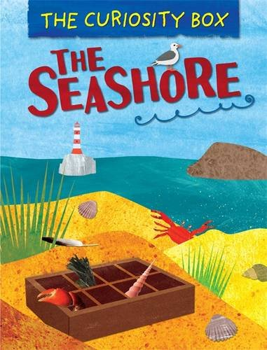 The Seashore (The Curiosity Box, Band 1)