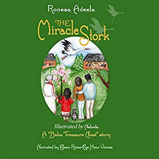 The Miracle Stork audiobook cover art